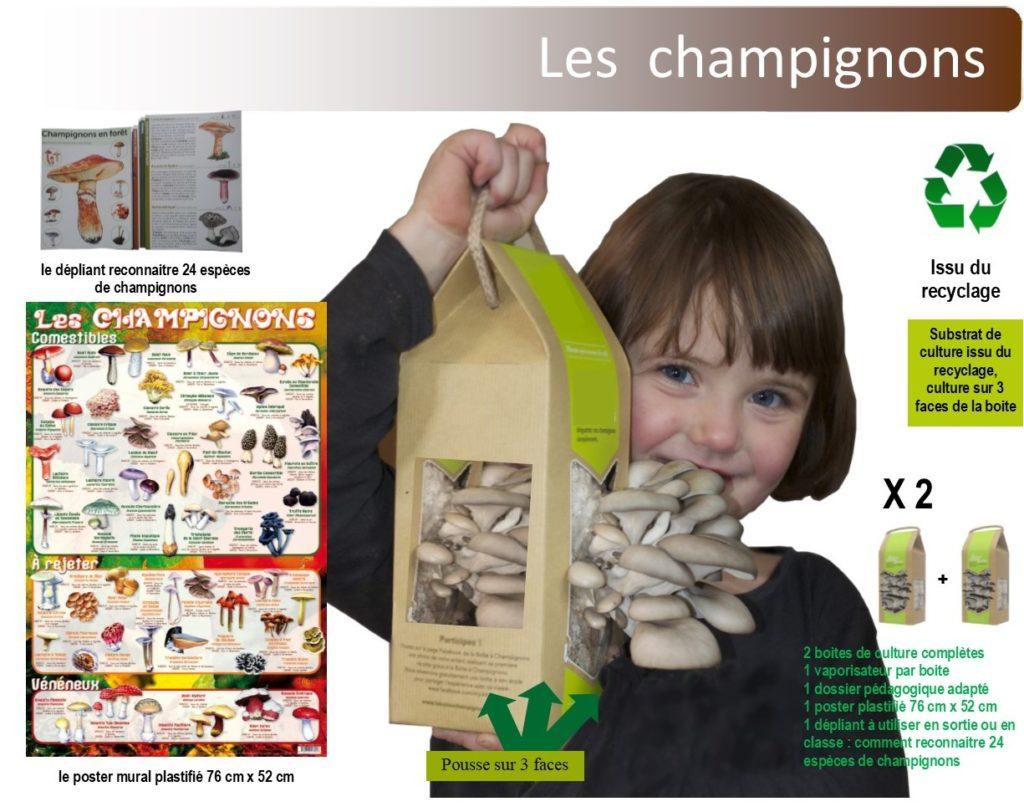 kit champignon
