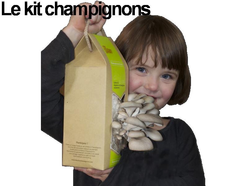 champignons kits scolaries